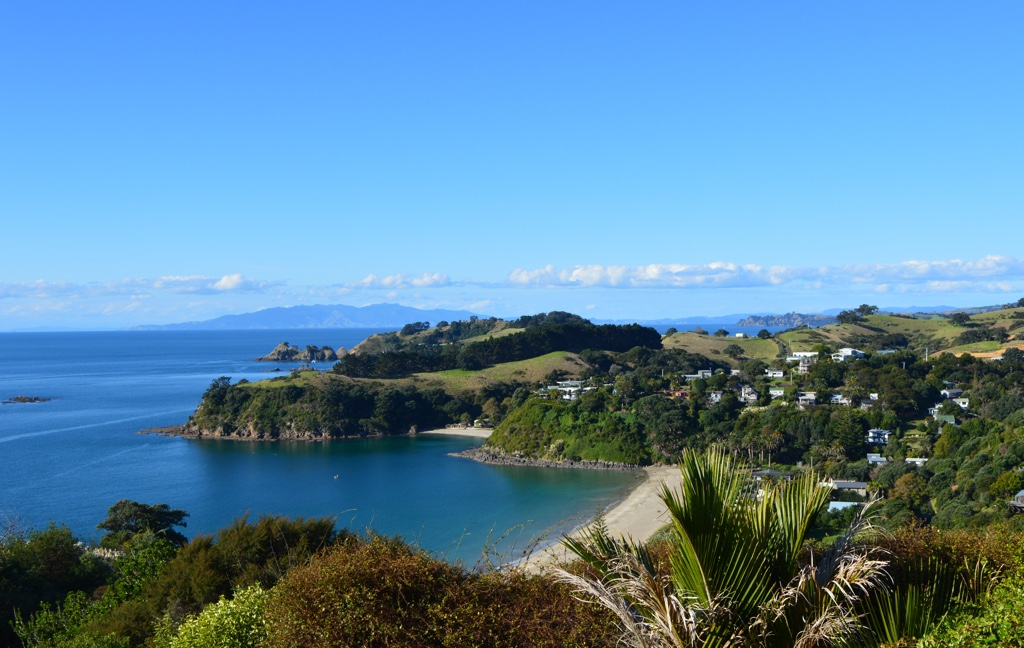 Palm Beach Waiheke Island Tour