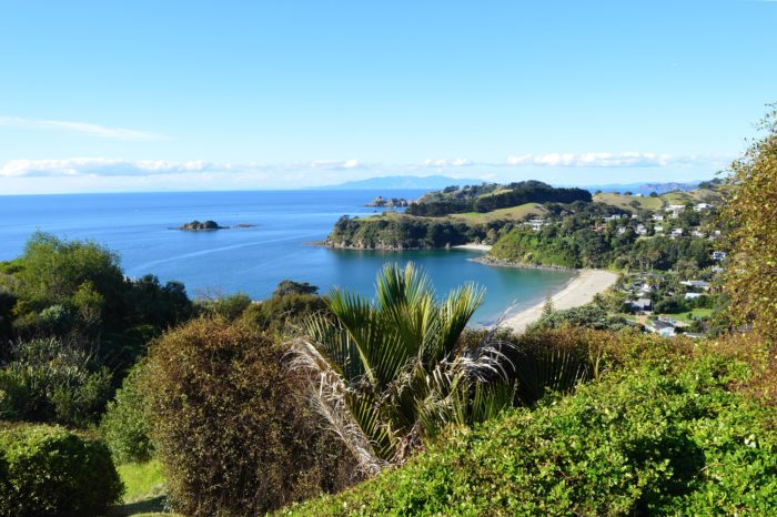 Waiheke Island Experience