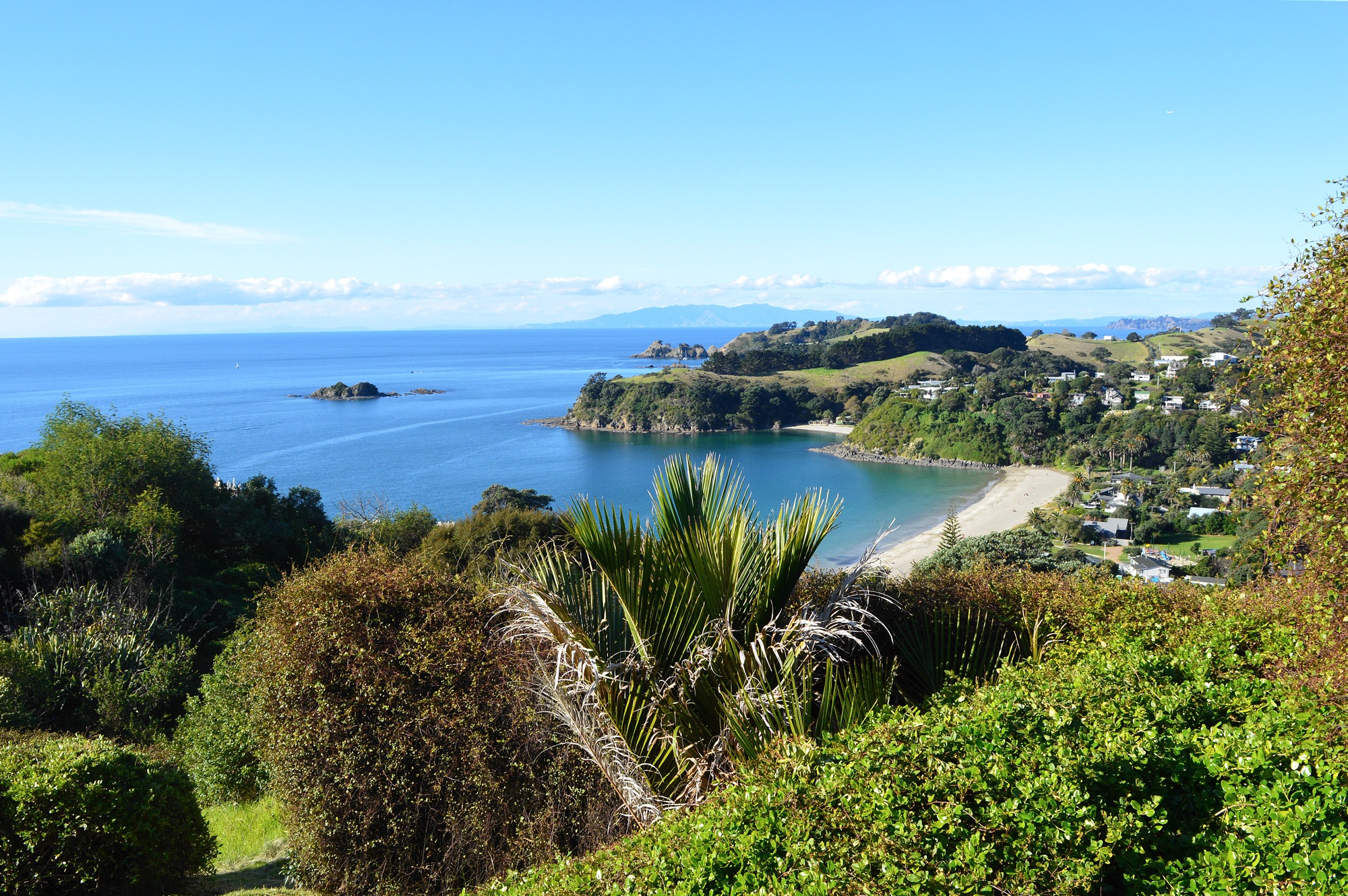 Palm Beach Waiheke Wine Tour