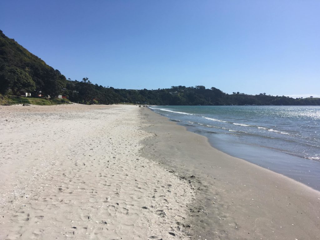 Onetangi Beach Waiheke Wine Tour